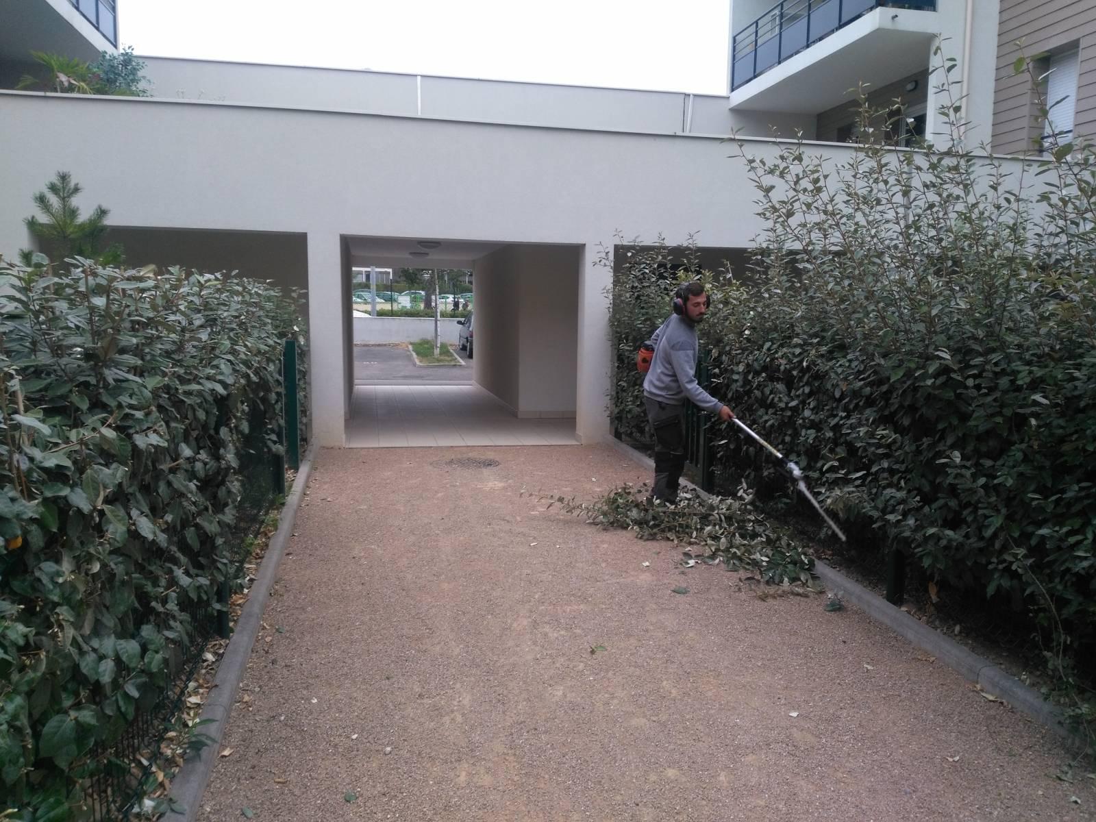 paysagiste jardinier chuzelles - création et entretien jardin et