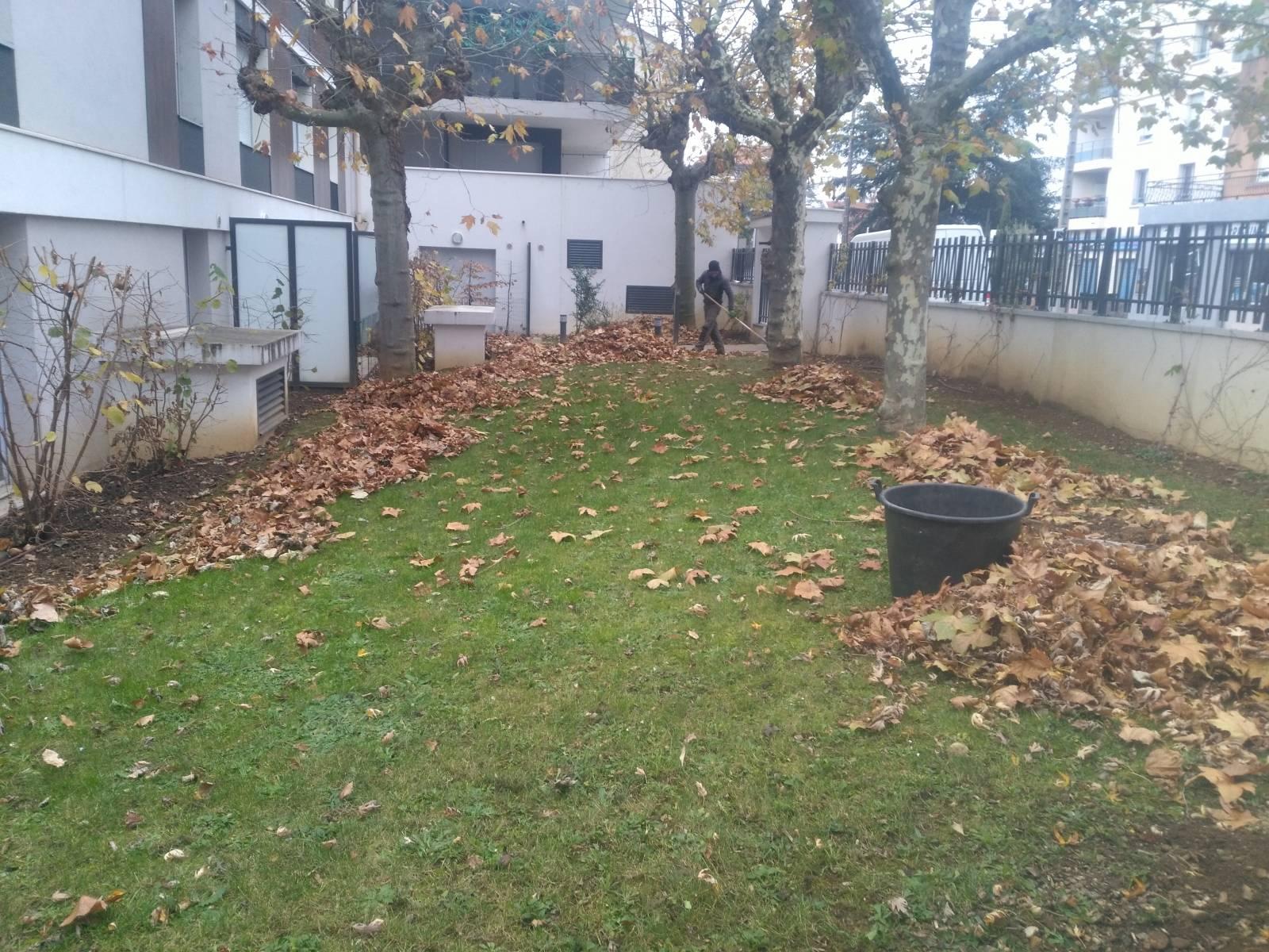 Entretien de jardin pour copropri t s et syndics de for Recherche personne pour entretien jardin