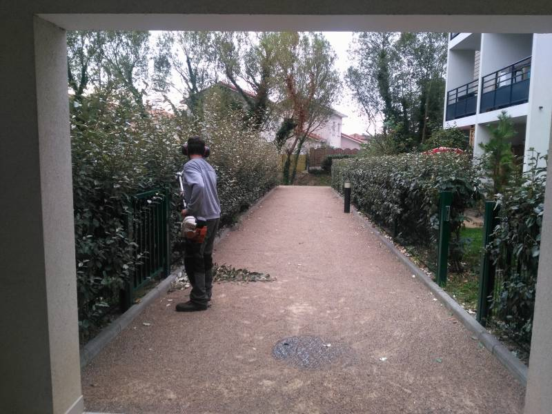 Paysagiste jardinier chuzelles cr ation et entretien for Entretien jardin copropriete